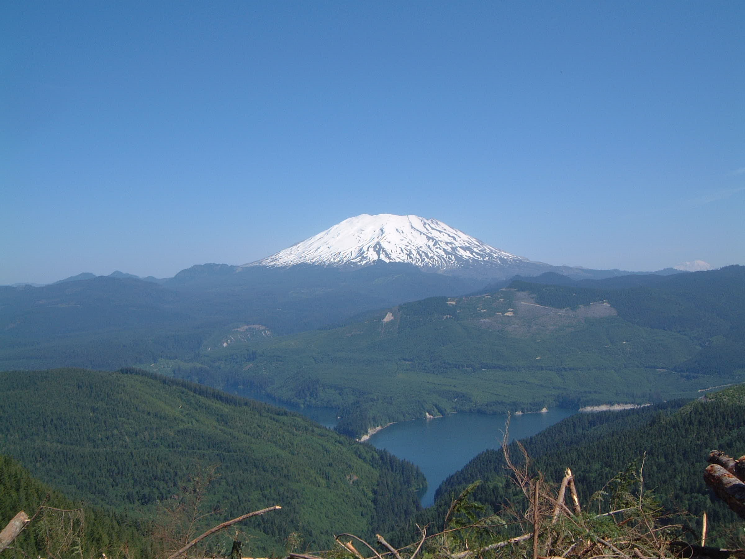 Mt St Helens forest recovery